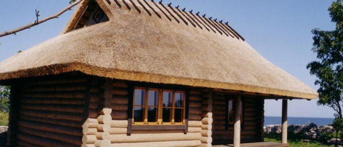 датская крыша из камыша