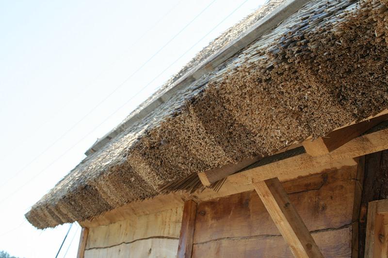 тростниковая крыша